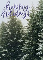 Holiday Winter Pine
