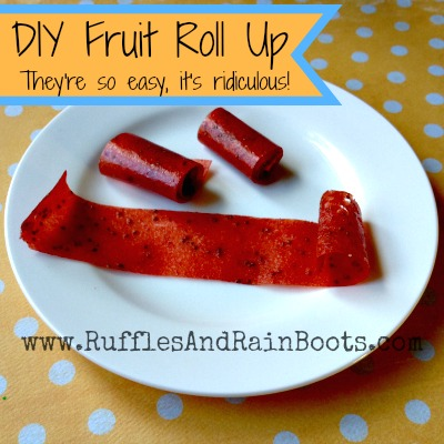 Homemade Fruit Roll Up: This Is So Easy, I'm Kind of Embarrassed!