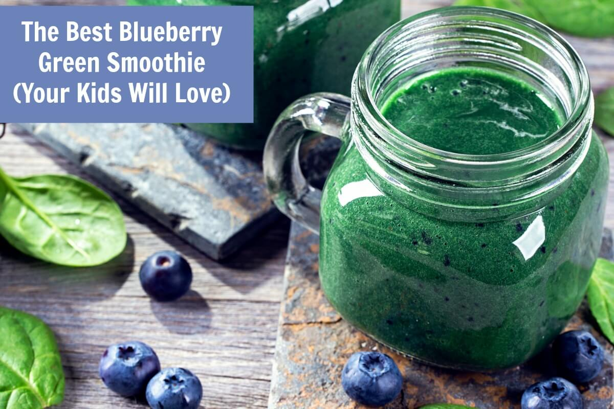 Best Blueberry Smoothie and Smoothie Treats recipe