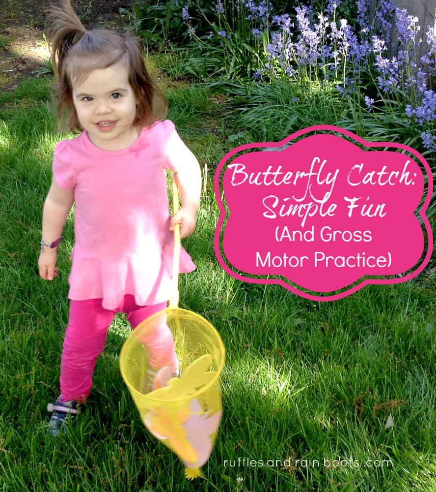 butterfly-game-outdoor-fun-summer-game