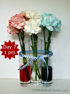 one-week-Patriotic-Crafts-and-Activities-Kids-Independence-Day