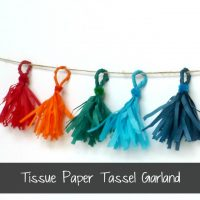 Tissue Paper Fringe Garland by Ruffles and Rain Boots