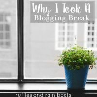 My Blogging Break