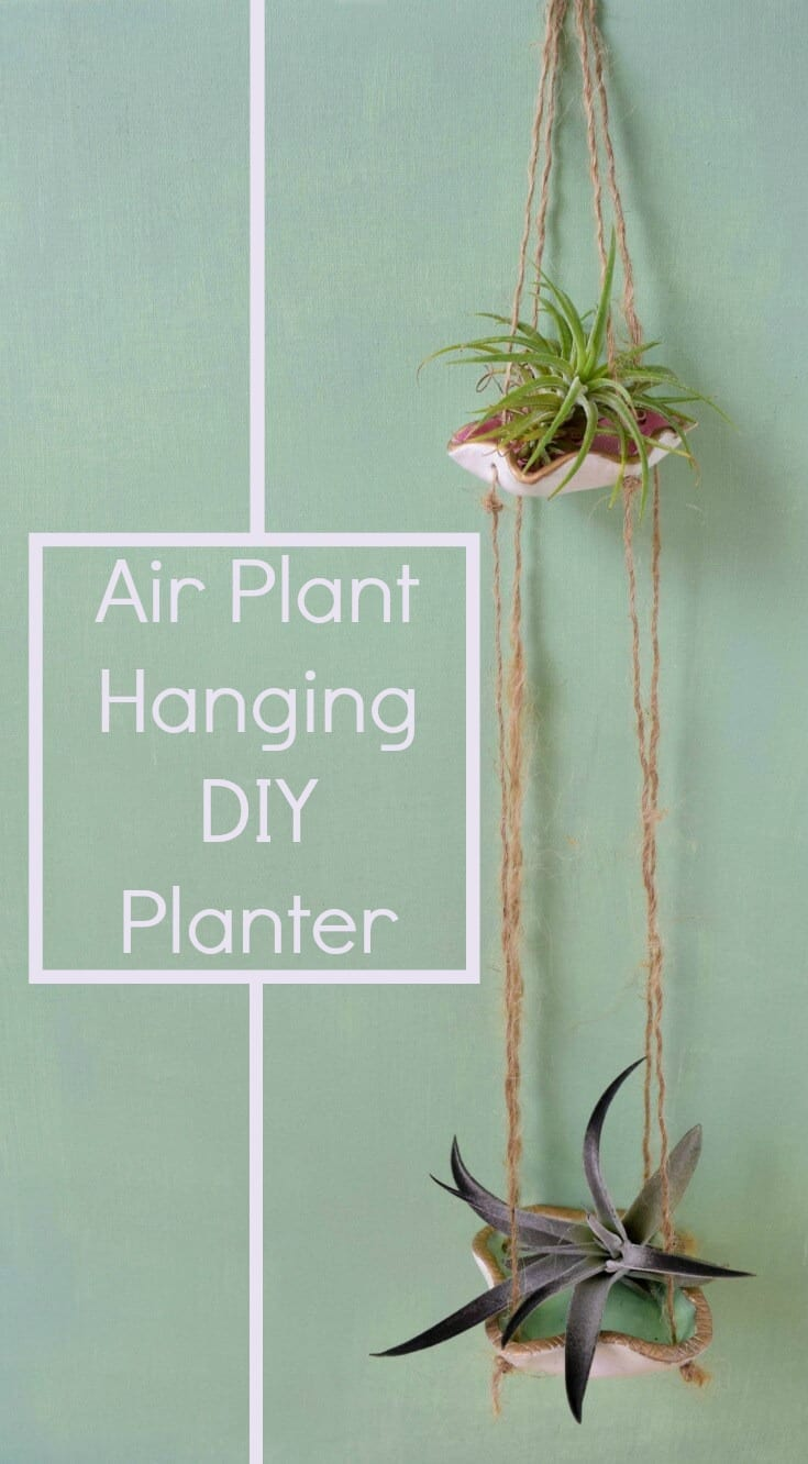 Air Plant Hanging DIY Planter Easy and Quick Craft