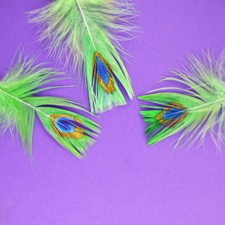 Paint peacock feathers with paint pens Posca crafts