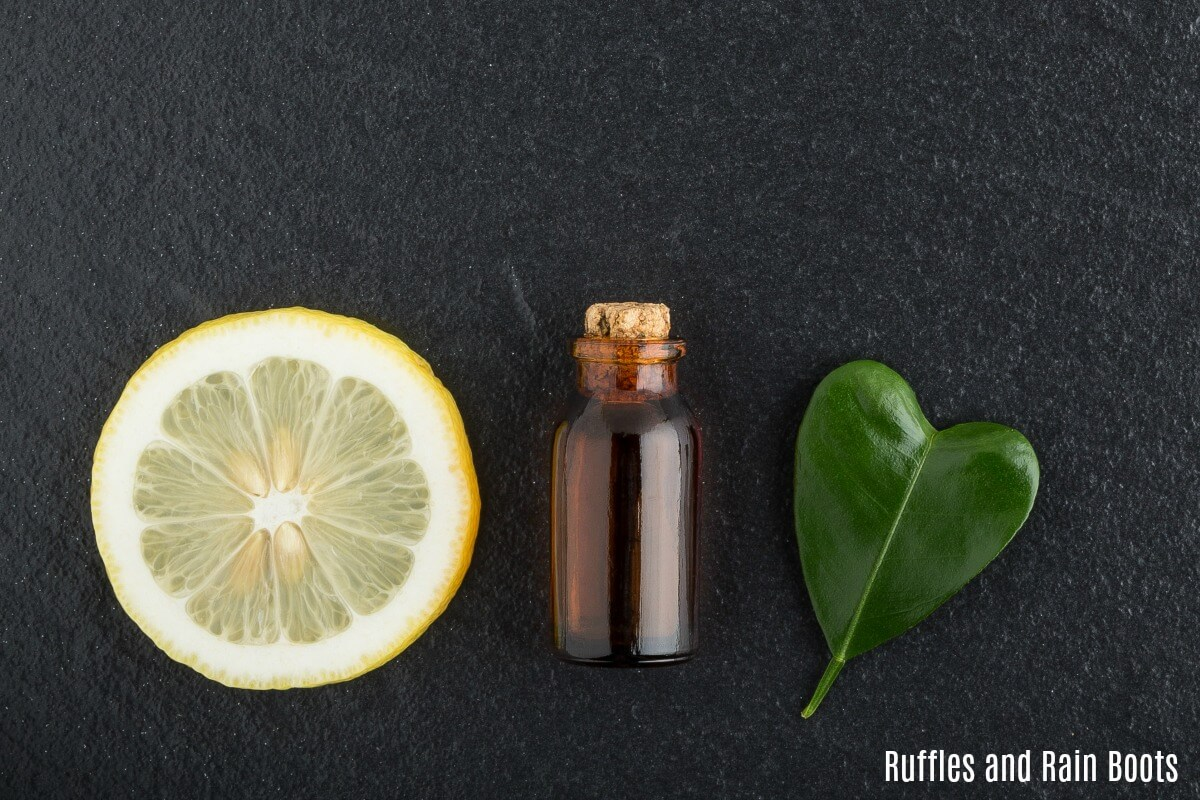 Essential Oil Recipes for Bath Bombs and Shower Steamers