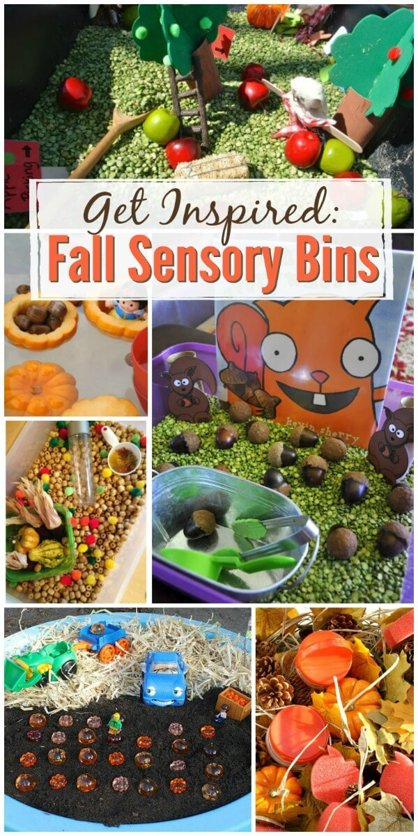 This collection of fall sensory bins will inspire you to set up a play prompt with the colors, scents, and themes of the season. #fallcrafts #sensorybins #sensory #fallcraftsforkids #sensoryplay #rufflesandrainboots
