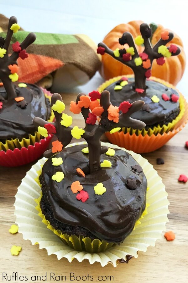 chocolate frosted chocolate cupcakes with chocolate fall tree and autumn leaf sprinkles