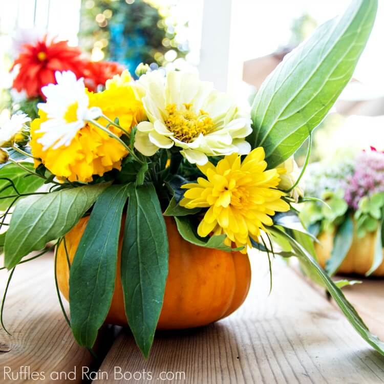 fresh floral arrangement in pumpkin vase on wooden table