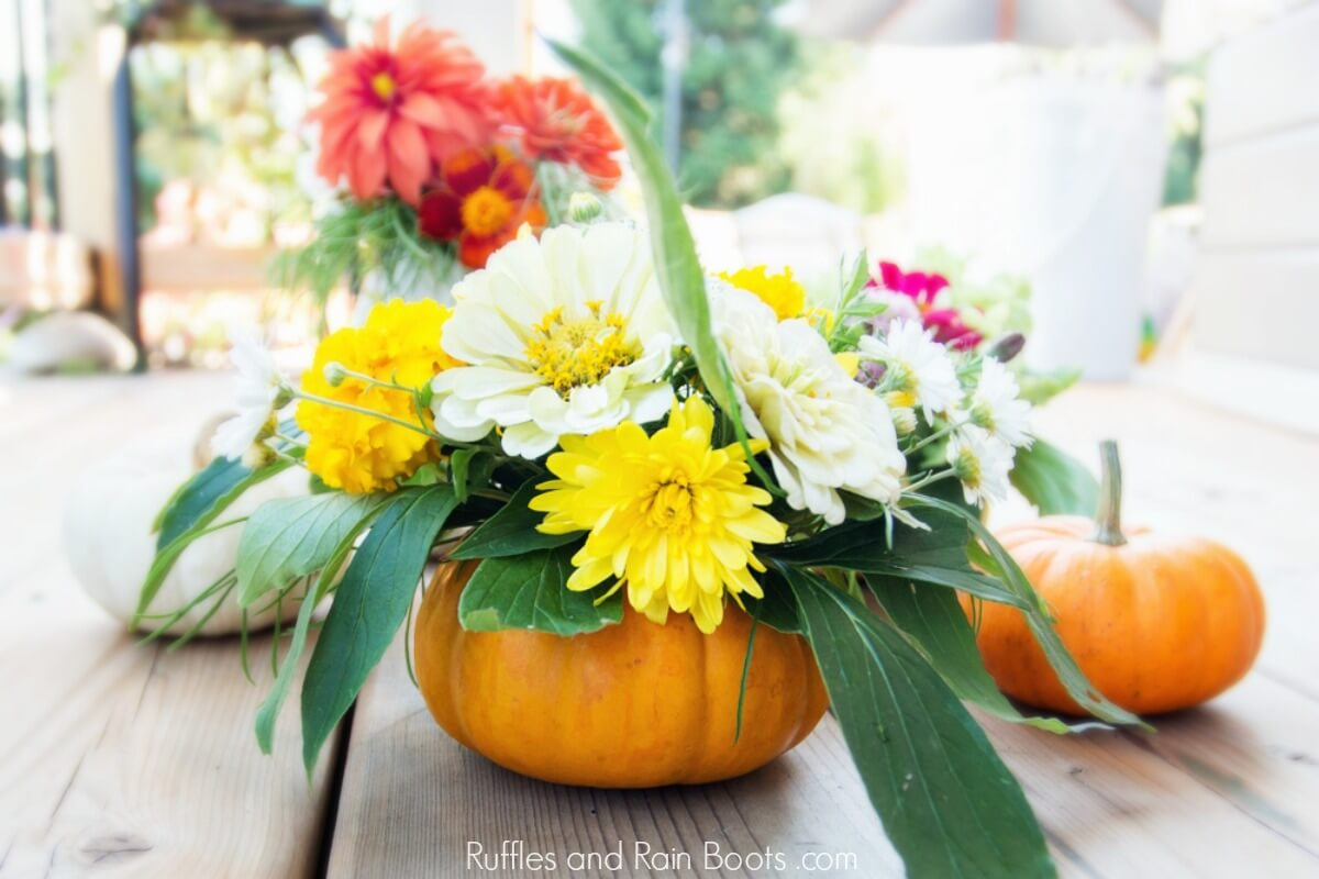 flowers in a fresh pumpkin on a wooden table