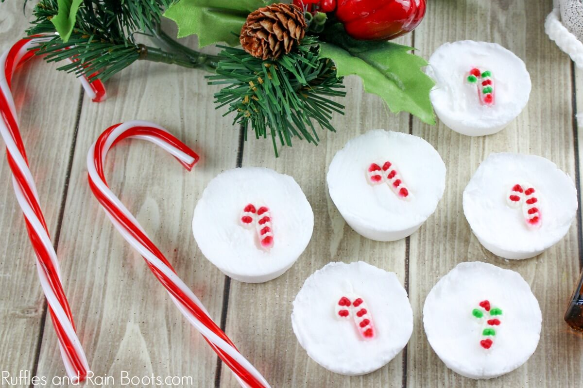 Candy Cane Christmas Shower Fizzies make the perfect DIY holiday gift!