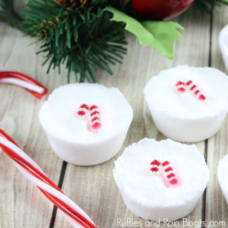 Candy Cane Christmas Shower Fizzies