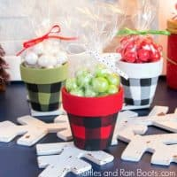 Christmas Clay Pot Craft – Plaid Treat Pots