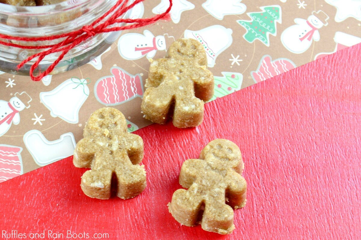 Gingerbread Sugar Scrub Cubes