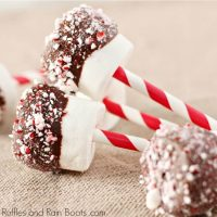 The Best Dipped Marshmallows for Christmas