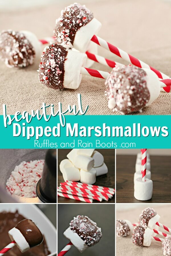 Chocolate Dipped marshmallows for Christmas in peppermint candy with text which reads the secret to perfect dipped marshmallows