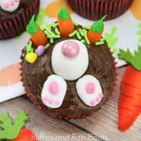 Bunny Cupcakes for Easter – Digging for Carrots!