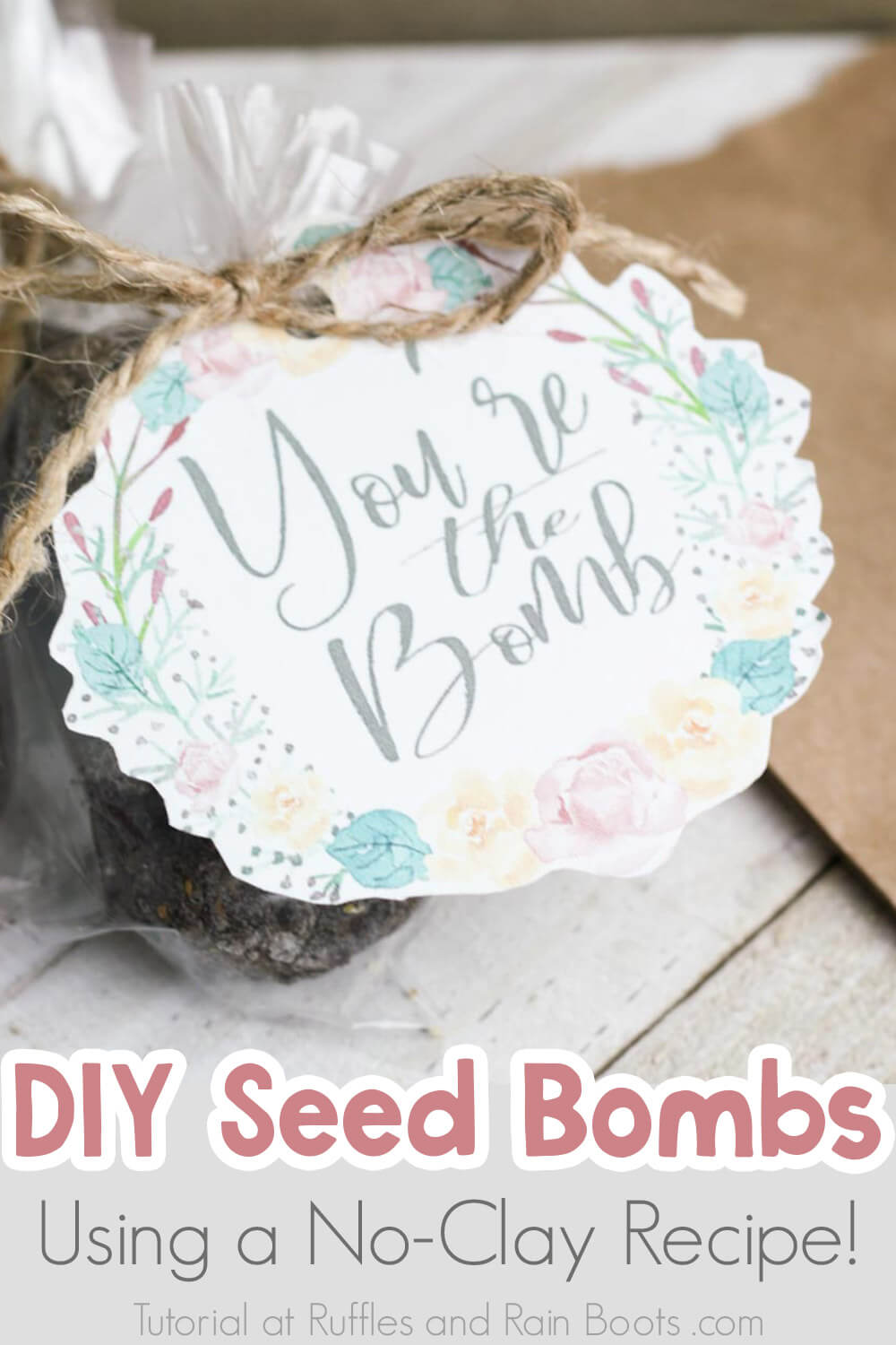 kid seed bomb recipe clay free with text which reads diy seed bombs using a no0clay recipe!