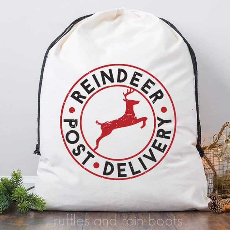 Reindeer Delivery Christmas SVG