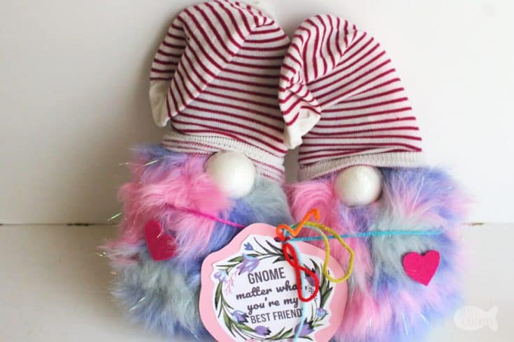 Cute Gnome Valentine's Day Gift Idea | Best Friend Gift