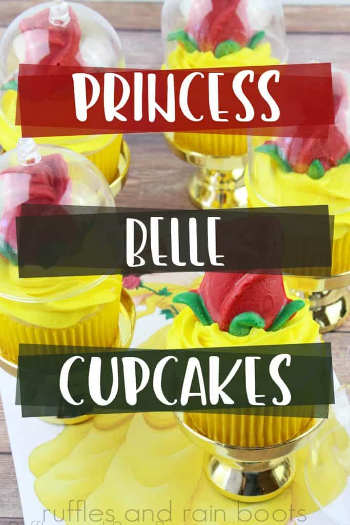 Princess cupcake background with large text boxes that read Princess Belle Cupcakes