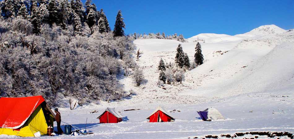 Camping in Dayara Bugyal