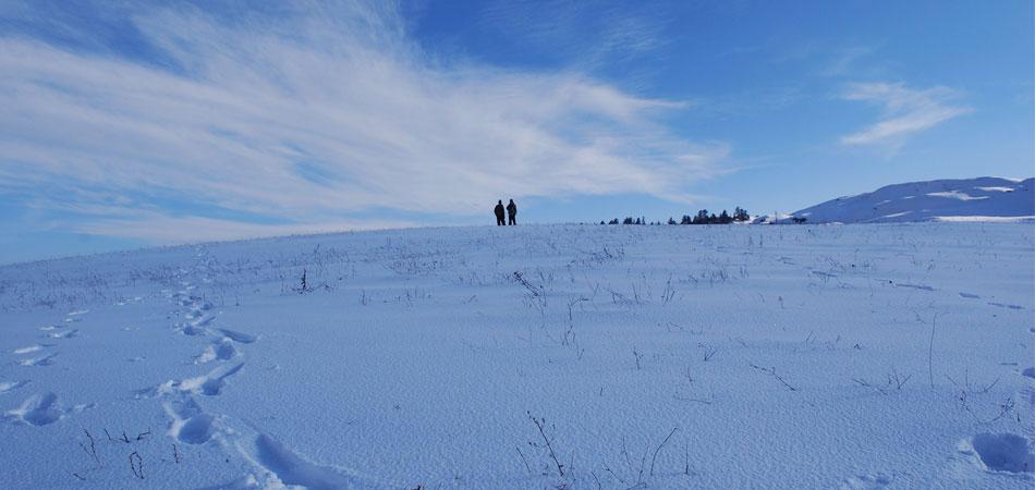 Skiing in Dayara Bugyal
