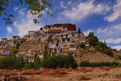 Ladakh_Rustik_Travel_498_332