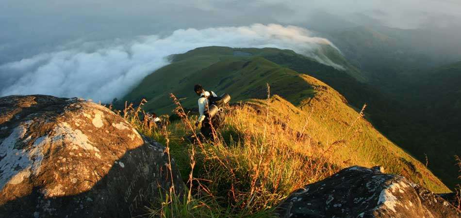Chembra Peak Trek_Rustik_Travel