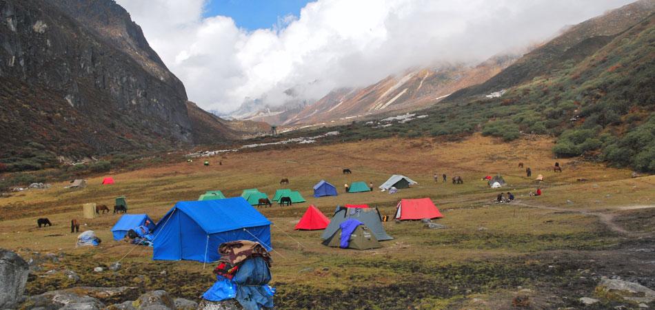 Dzongri_Goecha La Trek_Rustik Travel