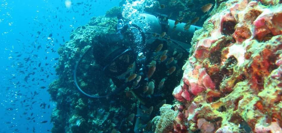 Sri Lanka Diving