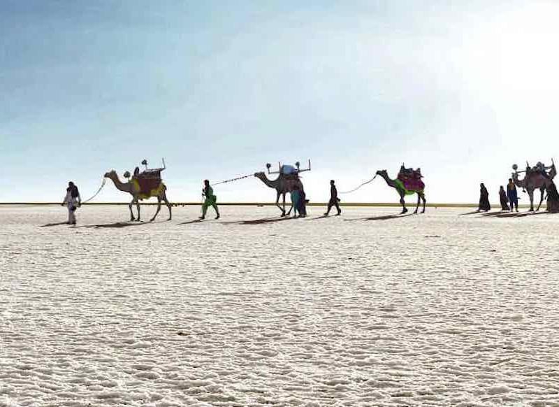 Gujarat_Rustik Travel