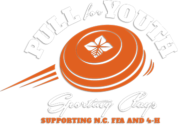 Pull for Youth Logo