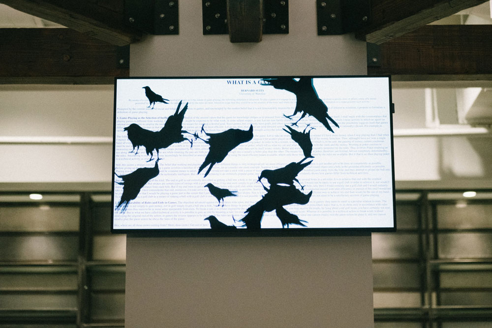 Lots of crows over an essay on a monitor