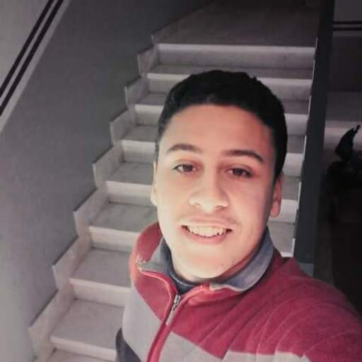 User Avatar of Mohamed Ayman