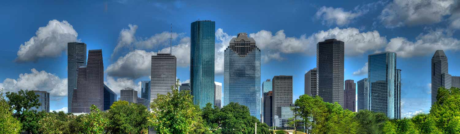 Photograph of the Houston skyline taken from a tree-lined park