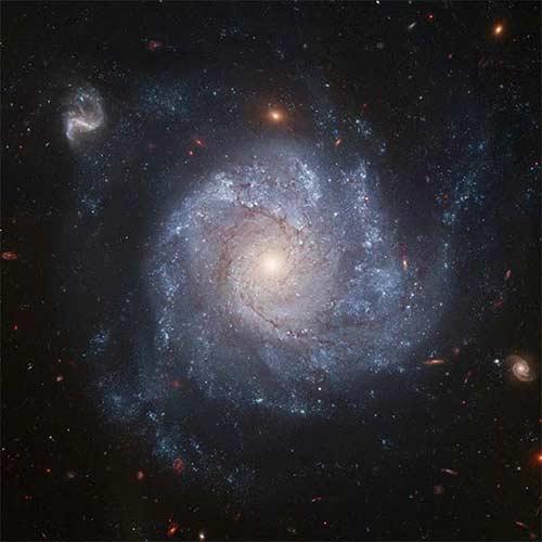 Photograph of NGC 1309