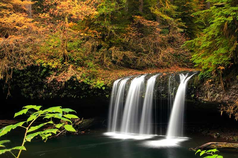 Photograph of Upper Butte Creek Falls