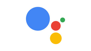 Vote using Google Assistant