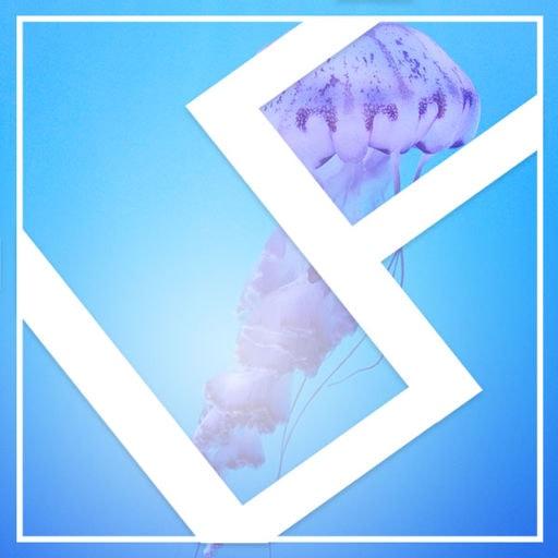 User Avatar of ljf4