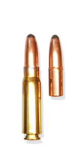 .223 Remington 69gr BTHP