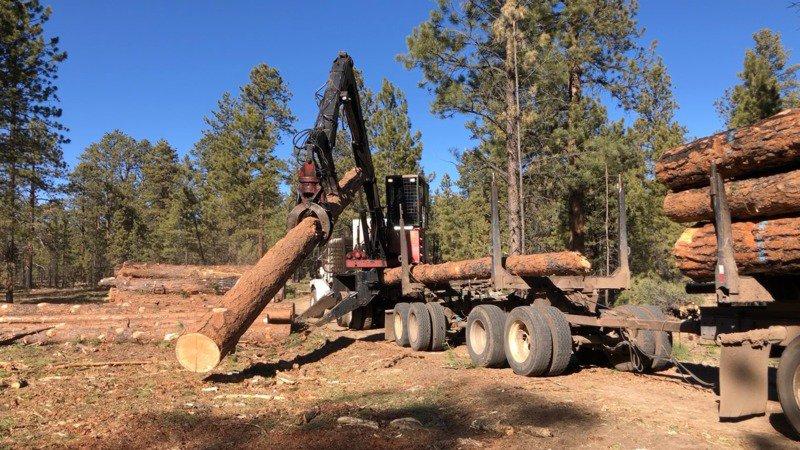 Logging_Truck_and_loader_Kaibab_Joe_Trudeau_Center_for_Biological_Diversity-scr.jpg