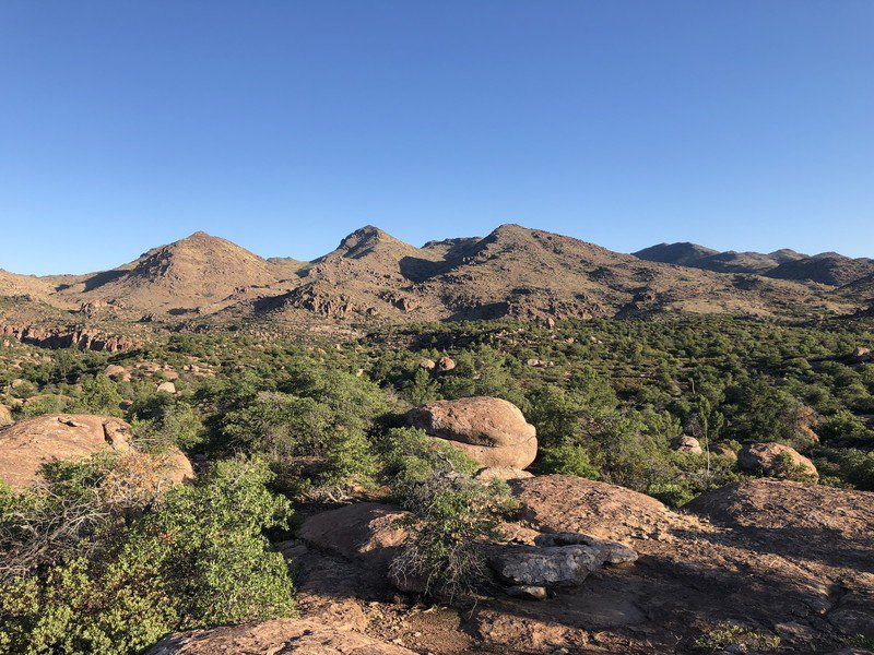 Site of proposed Resolution Copper mine, Oak Flat, Ariz. Photo credit: Russ McSpadden, Center for Biological Diversity