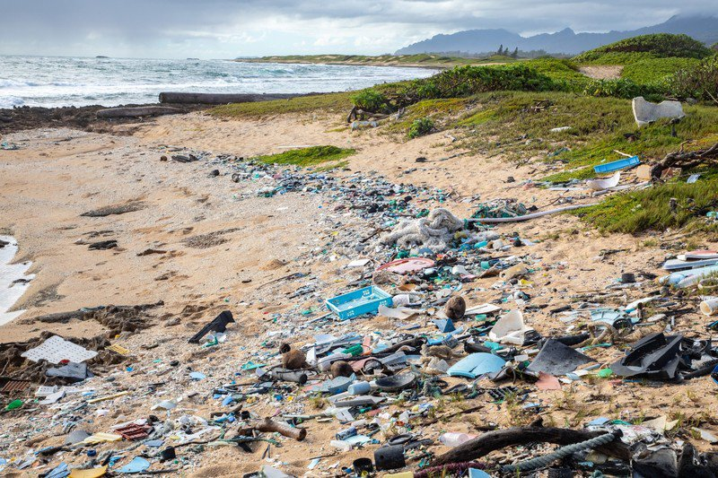Plastic_on_beach_2_photo_by_Raftography_Sustainable_Coastlines_Hawaii_FPWC_OK_for_Media_Use-scr copy.jpg