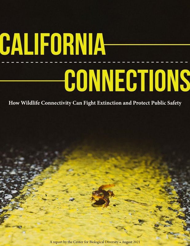 California Connections