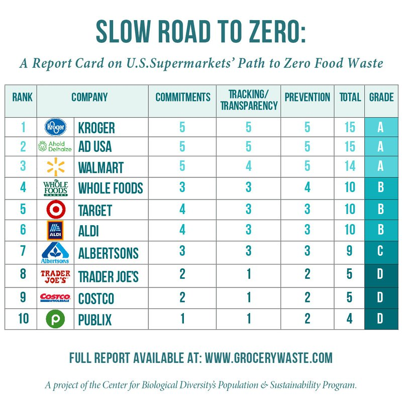 Slow Road To Zero Report Card