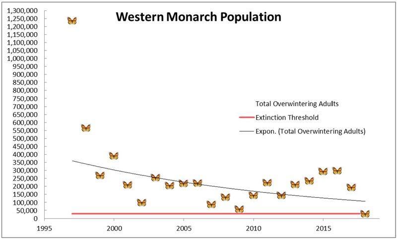 Western-Monarch-Population-Center-for-Biological-Diversity.jpg