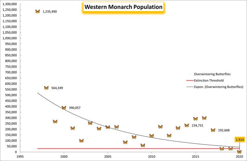 Western_Monarch_Population_2021_Center_FPWC-hpr-march-17.jpg