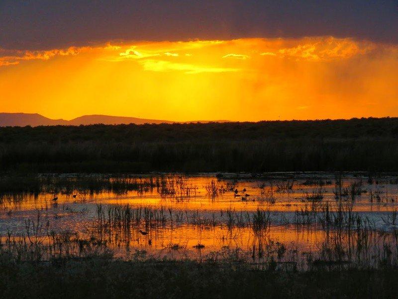 Wetlands at Stillwater National Wildlife Refuge at sunset. Photo credit, Patrick Donnelly