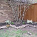 4/5/2010 Spring Beds (24)
